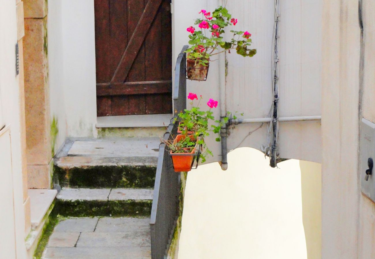 Apartment in Sperlonga - Casa Ulisse Sperlongaresort